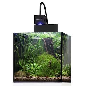 Aquarienbeleuchtung