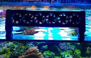 Aquarium Lüfter & Kühler