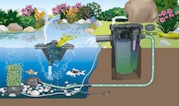 Pond Filtration & UV Units