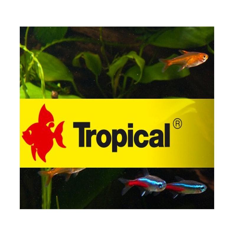Tropical Aquarium Fischfutter