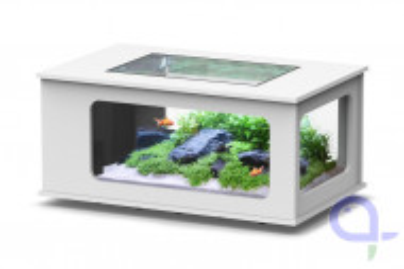 Aquarientisch - Aquatlantis Aquatable - 100x63 - Weiß