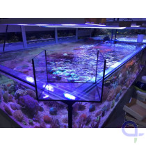 Quarantänebecken - Aquarium 60 Liter LED komplett