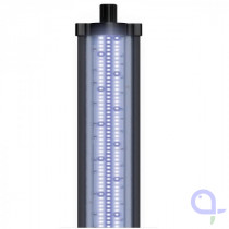 Aquatlantis Easy LED Universal Marine Blue