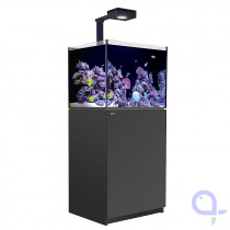 Red Sea Reefer DeLuxe 170 schwarz Meerwasseraquarium