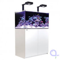 Red Sea Reefer DeLuxe 250 weiß Meerwasseraquarium