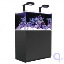 Red Sea Reefer DeLuxe 250 schwarz  Meerwasseraquarium