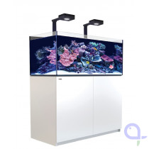 Red Sea Reefer 425 XL Deluxe - Weiß - 2 x ReefLed 90