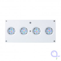AI Hydra HD 64 LED