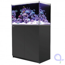 Red Sea Reefer 250 schwarz Meerwasseraquarium
