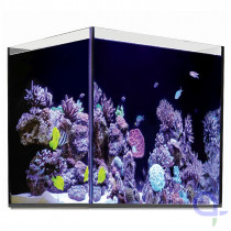 Red Sea Reefer 170 Glasbecken