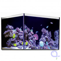 Red Sea Reefer 250 Glasbecken