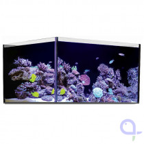 Red Sea Reefer 450 Glasbecken