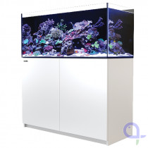 Red Sea Reefer 350 weiß Meerwasseraquarium