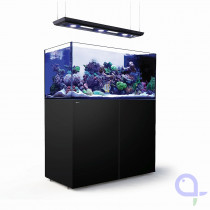 Red Sea Reefer Peninsula 500 Deluxe Schwarz