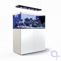 Red Sea Reefer Peninsula 500 Deluxe Weiss