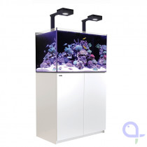 Red Sea Reefer XL 300 DeLuxe Meerwasseraquarium weiß