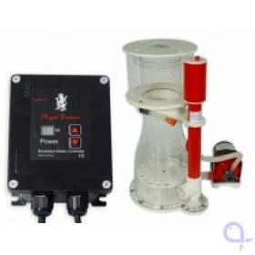 Royal Exclusiv Bubble King Double Cone 200 + RD3 Speedy