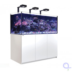 Red Sea Reefer 625 XXL Deluxe - Weiß - 3 x ReefLed 90