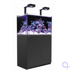 Red Sea Reefer XL 300 DeLuxe Meerwasseraquarium schwarz