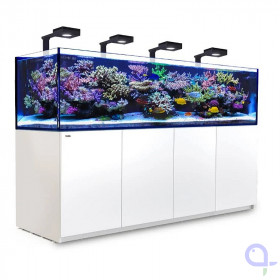 Red Sea Reefer 3XL 900 Deluxe - Weiß - 4x ReefLed 90
