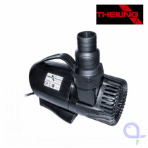 Theiling River 8000 pump