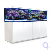 Red Sea Reefer 3XL 900 DeLuxe schwarz