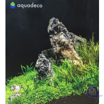 Seiryu Rock Set - Mini Landschaft für 60 Liter Aquarium