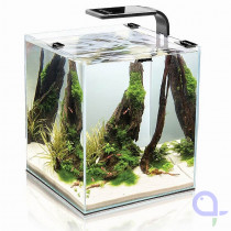 Aquael Shrimp Set Smart 2 - 30L Nano Aquarium Cube für Garnelen