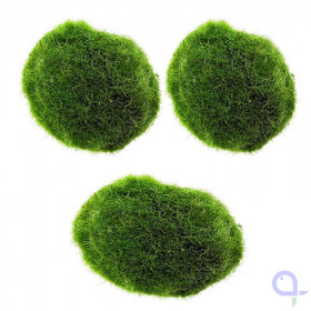 Moss ball set 3 pieces