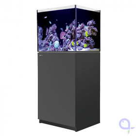 Red Sea Reefer XL 200 marine aquarium in black