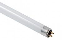 UVC Lampe TL Sockel